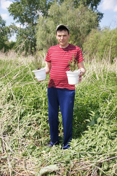 Фото Владимир с елями