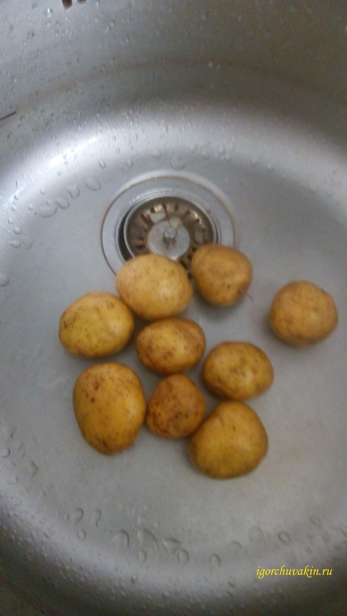 Свежий картофель. фото Игоря Чувакина