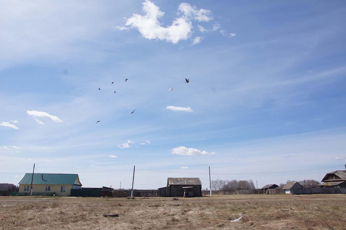 ... а облака. Колхозные постройки. Заброшка СССР.