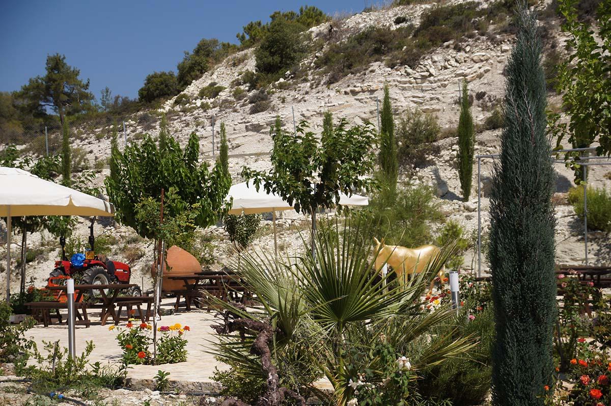 Золотой осёл. Отель Crowne Plaza. Limassol.