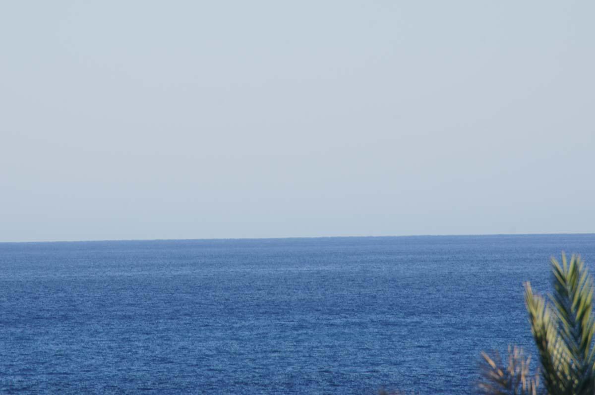 Море за пальмой. Отель St. George. Paphos.