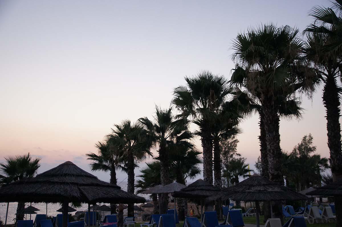 Пальмы и зонтики. Отель St. George. Paphos.